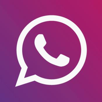 como-criar-um-link-para-whatsapp-link-encurtado-camila-carvalho